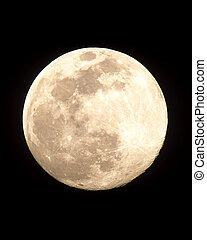Full Moon - Full moon large image.