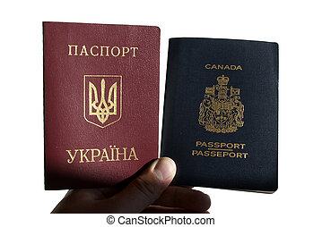 passaportes, segurando