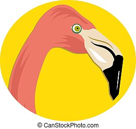 Pink Flamingo - The head of a pink flamingo bird