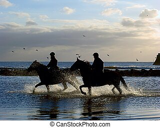 Galloping Horses - Horses galloping in the sea at twilight.