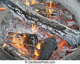 Outdoor Fire - Winter fire in a park. This picture was taken...