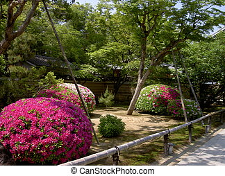 Japanese garden - A beautiful Japanese garden in the summer...