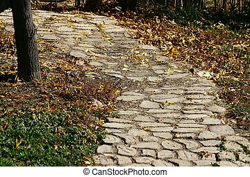 Cobblestone Path - Cobblestone path amid fallen leaves Focus...