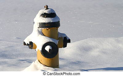 fire hydrant in snow - fire hydrant covered in snow
