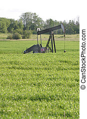 oil pump jack - An oil pump jack operates in a farmers field...