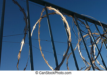 Razor wire - razor wire and iron bars against a dark blue...