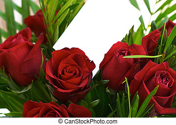 Red roses 3 - bouquet with a blank card