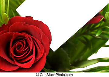 Red roses 6 - Rose with a blank gift tag