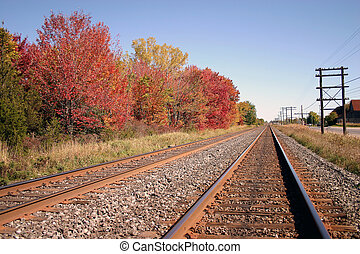 Tracks of Autum - Railway tracks heading into Belleville...