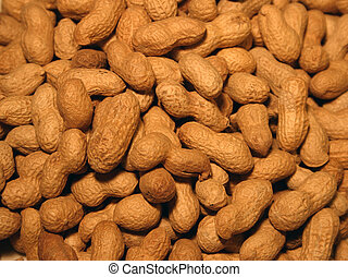 Peanuts background 2 - Homogeneous peanuts texture - wider...