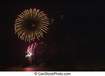 Firework 'flower' - Eid firework display in Qatar, Arabia