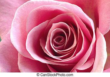 Cor-de-rosa,  rosÈ