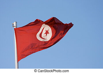 Tunisian flag - The Tunisian national flat