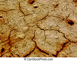 Cracked Earth - Closeup of dry cracked earth