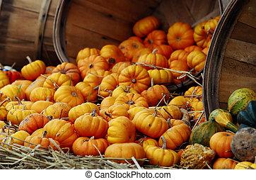 Pumpkin basket spilling into hay