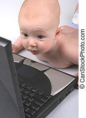 bebé, computador portatil, Uno