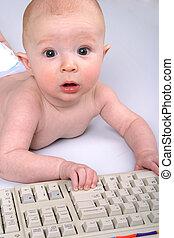 bebé, mecanógrafo