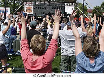 Crowd at Concert - Audience at outdoor concert