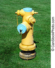 Fire Hydrant - Fire hydrant in grass field.