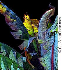 Banana leaves - Colorful banana leaves