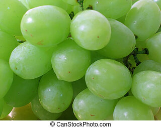 Green Grapes - Cluster of green grapes