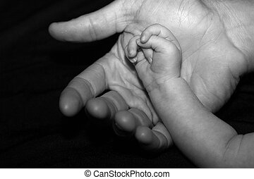 Hand in hand - Baby hand in adult hand