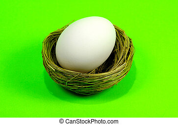 Nest Egg - Nest and Egg on Green Background
