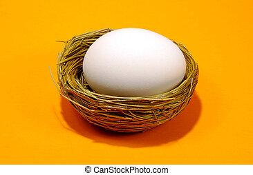Nest Egg 2 - Nest and Egg on Orange Backgrond.