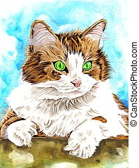 Cat - fluffy cat illustration
