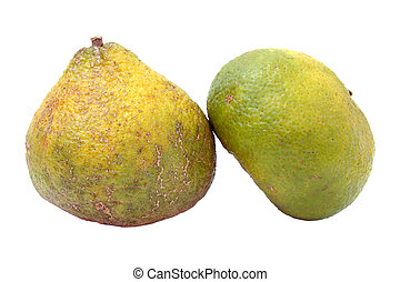 Ugli Fruit - Also Called Uniq Fruit A cross between a...