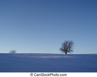 blue winter mood - tree in a snow field