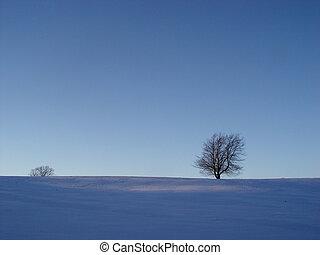 blue winter mood - tree in a snow field