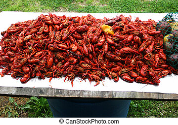Crawfish2 - Forty pounds of pure dee pleasue for eating