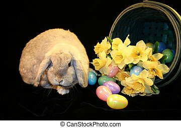 Easter Bunny 2 - Easter Bunny with basket of Easter eggs and...