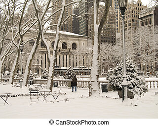 Snowy Park - This is a shot of Bryant Park In Manhattan...