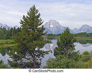 Mount Moran, Tetons, Wyoming, reflected with trees in...
