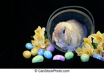 Easter Basket 2 - Rustic Easter basket with Easter bunny...