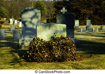 Headstones - Headstone Covered With Vines.