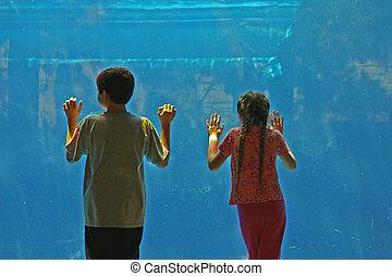 boy and girl standing by aquarium window