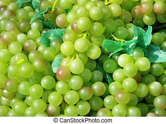 Grapes - Background