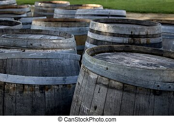Wine Barrels - Rows of aged wine barrels