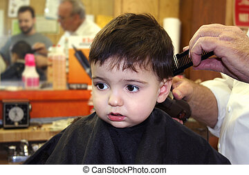 Boy Child Barbershop - Toddler boy getting his hair cut at...