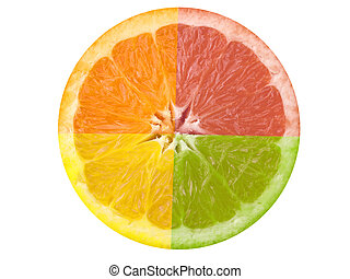 Citrus Fruit - This is a composite shot of four different...