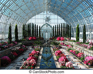 conservatory - taken at Como park conservatory