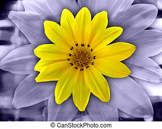 Artistic Flower - Purple Yellow Flower