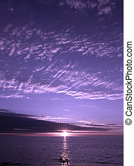 Purple Sunset - Purple sunset shining on people playing in...