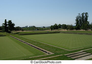 Polo field in California, U.S.A.