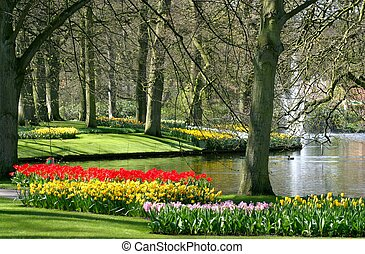 parque, primavera, tempo