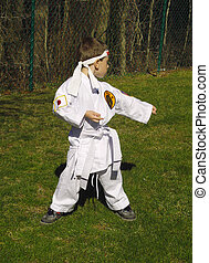 Karate Kid - Child Practicing Karate