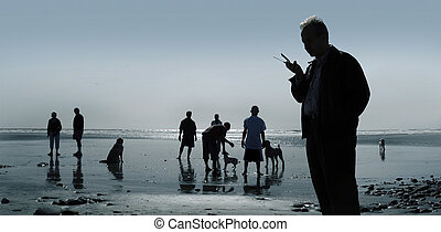 Dogs and people at the beach